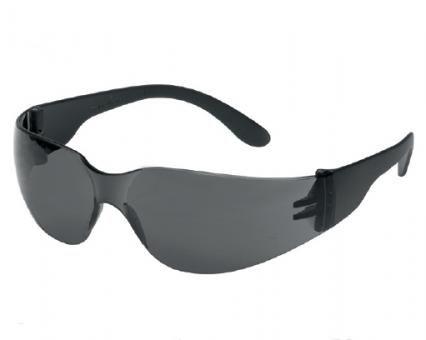 CHAMP Tector Schutzbrille grau